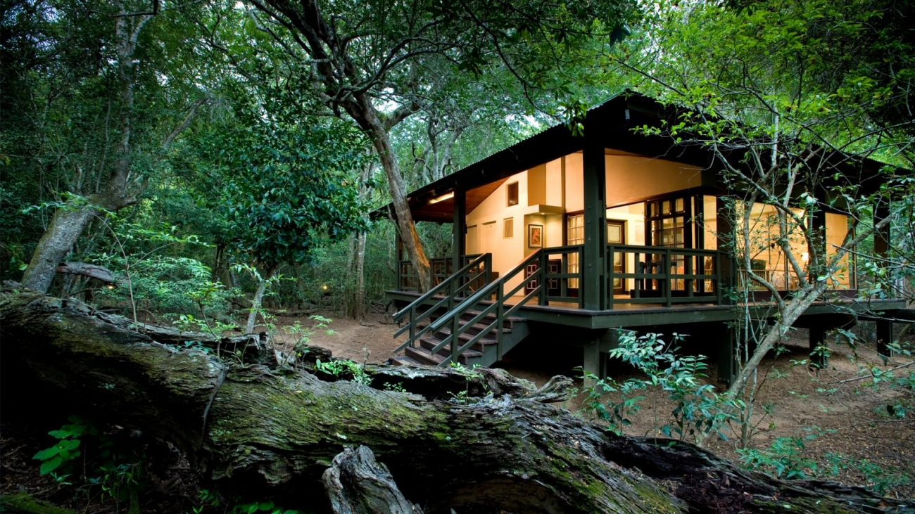 Header-luxury-glass-suite-at-andbeyond-phinda-forest-lodge-on-a-luxury-safari-in-south-africa-1600x900